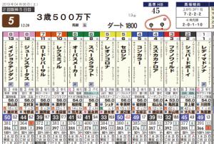 Photo_332