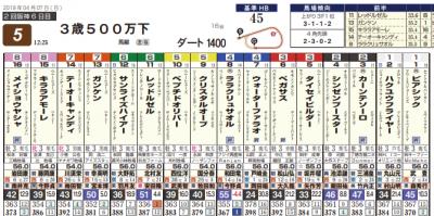 Photo_370